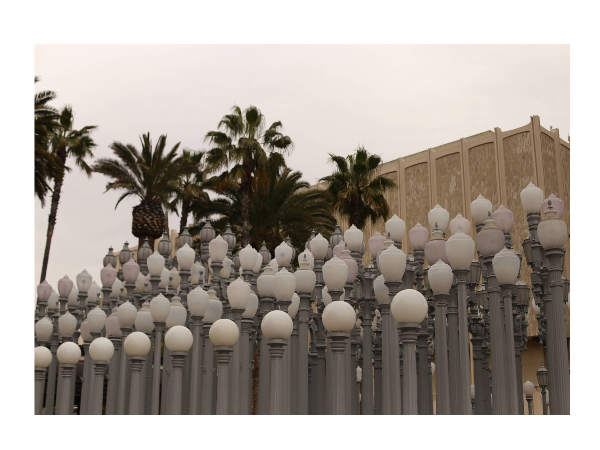 lacma_mintberry